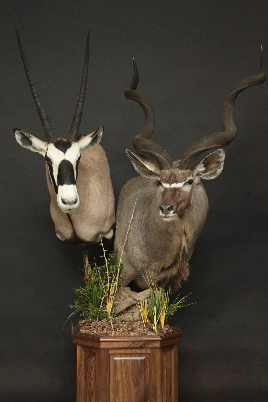 Double Pedestal on Walnut  Kudu & Gemsbok  Double (7)