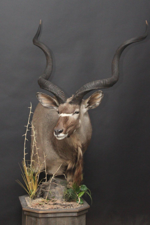 Barnboard Pedestal  Kudu (6)