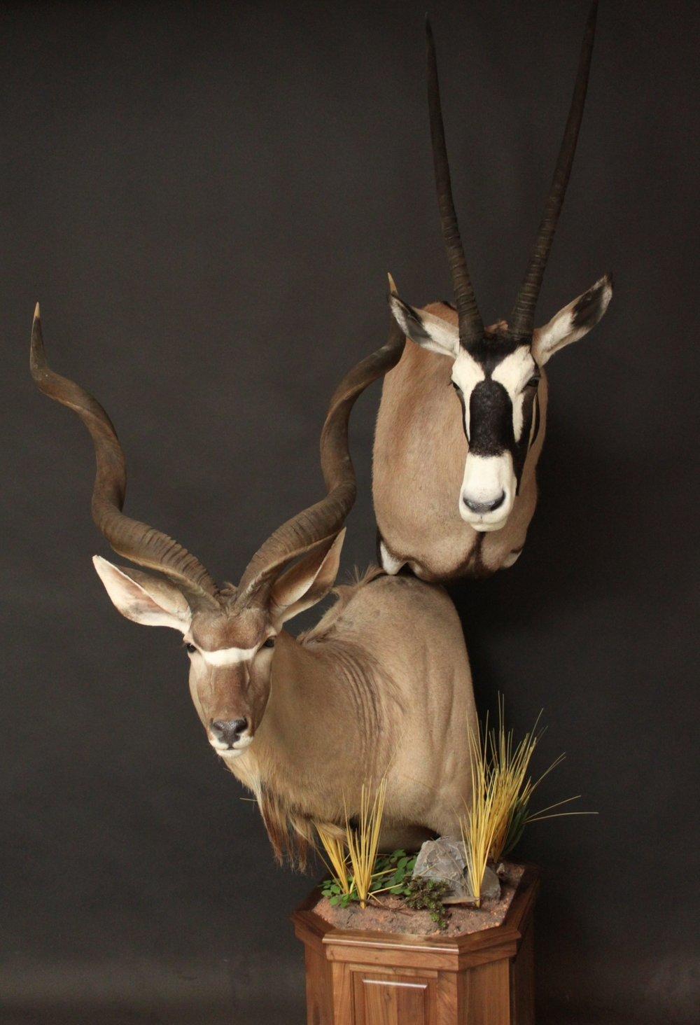 Double Pedestal on Walnut  Kudu & Gemsbok  Double (2)
