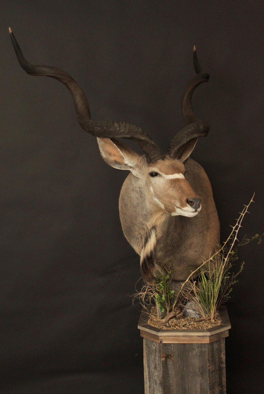 Barnboard Pedestal  Kudu (4)