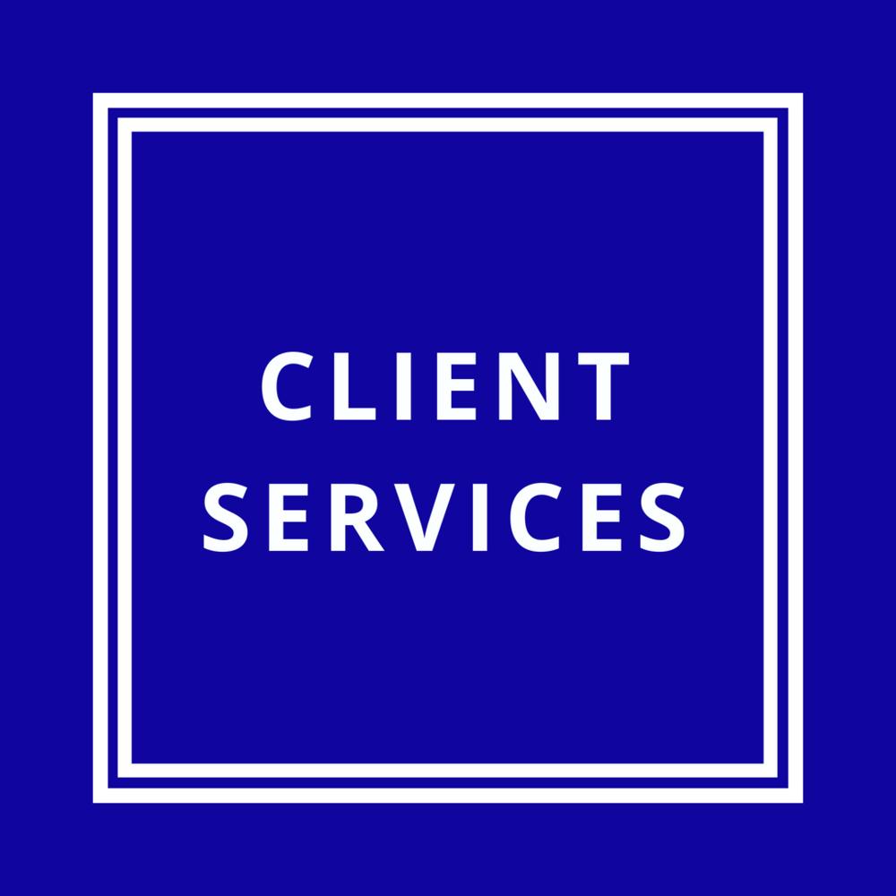 client services.png