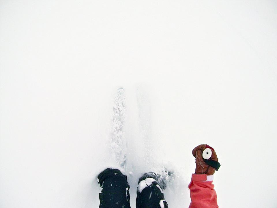 skiiing-3.jpg