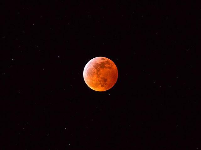 goodnight stars, goodnight air, goodnight noises everywhere ... goodnight moon