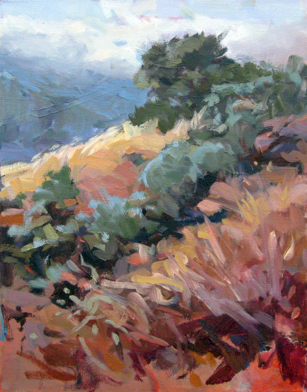 "Mist on the Divide • oil on canvas • 11 x 14"" * $225"