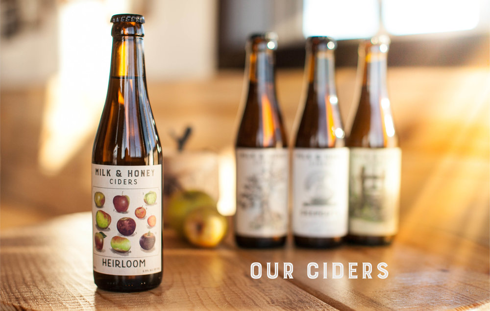 Our Ciders Header.jpg