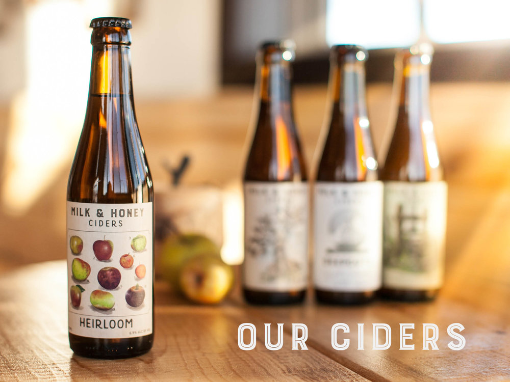 Our Ciders Header.jpg