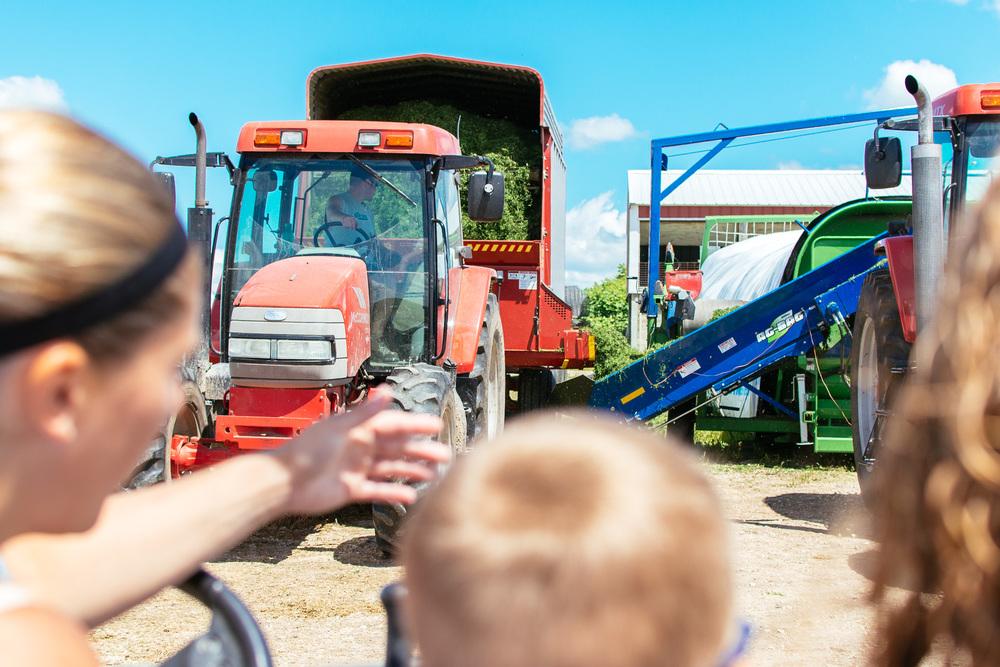 farm-26.jpg