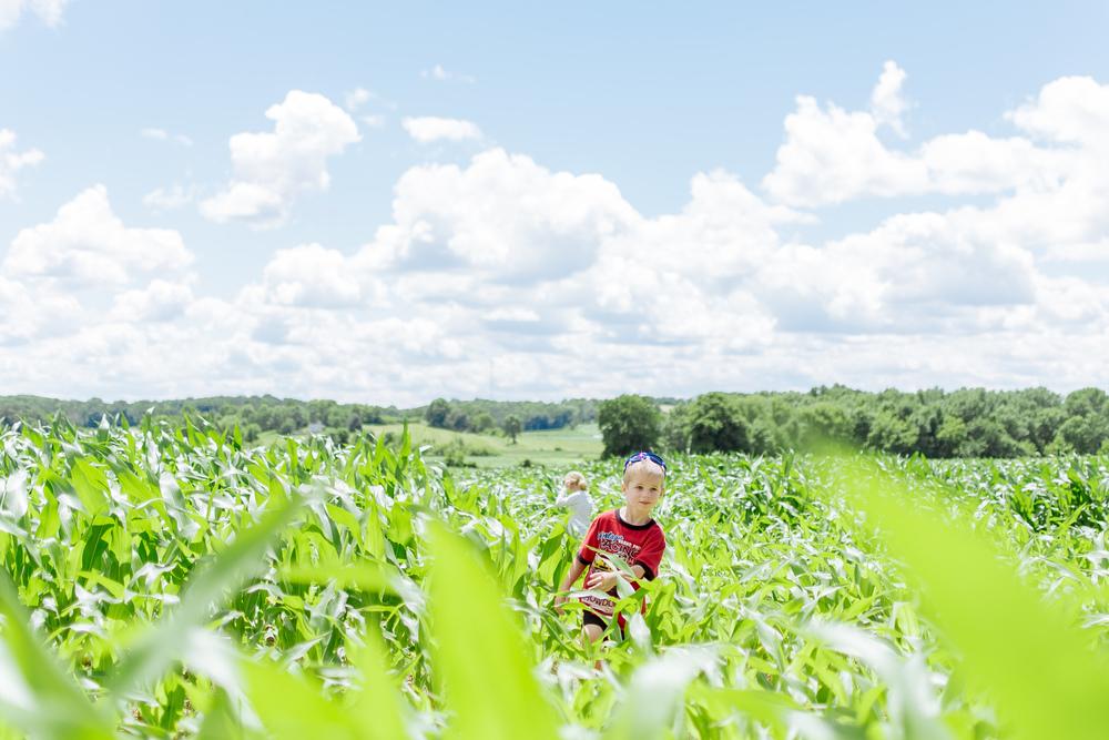 farm-41.jpg