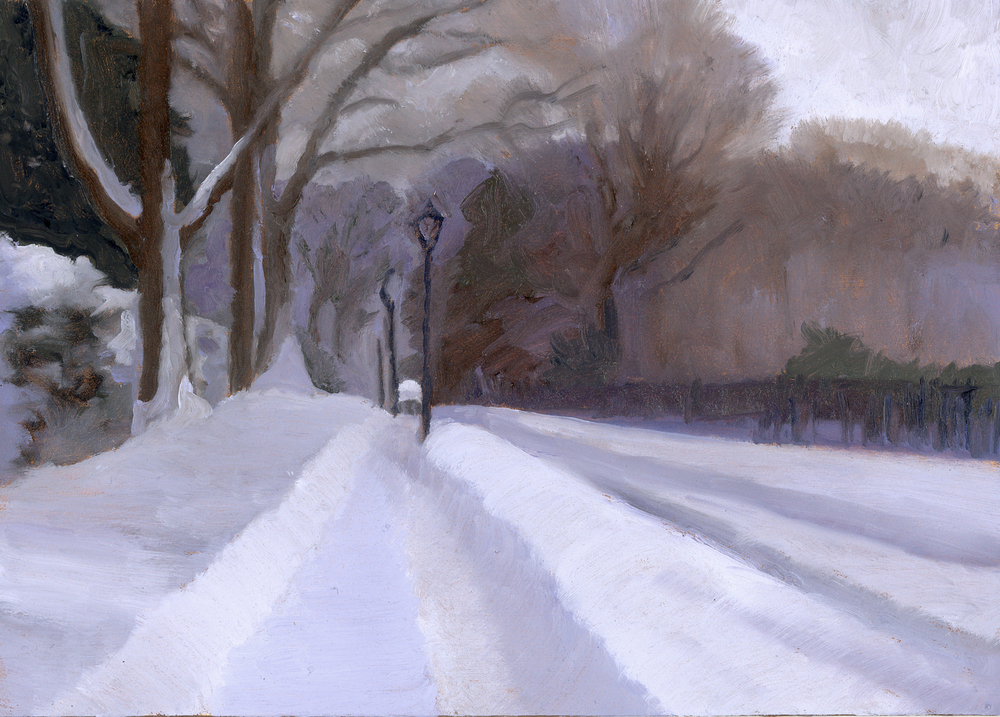 LAPSLEY LANE AFTER THE  FIRST BIG SNOW.jpg
