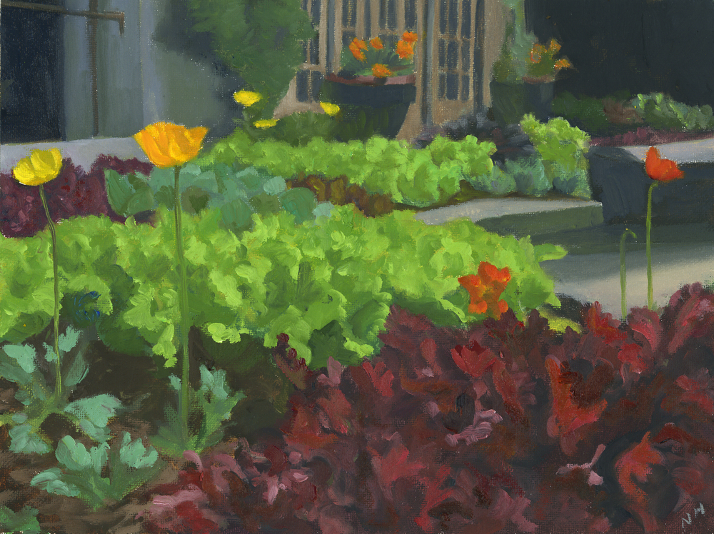 Poppies and Lettuce.jpg