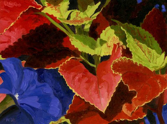 Coleas and petunias.jpg