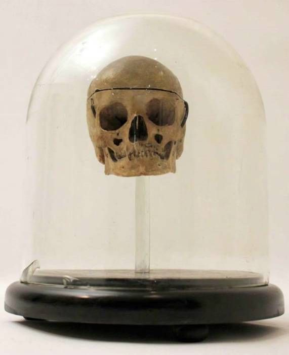 Dome with 18th-Century Human Skull