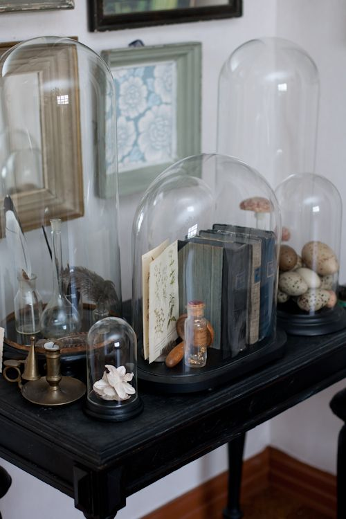 Glass Domes to Protect an Assortment of Items
