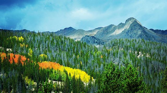 Another beautiful fall day in Colorado! Who wants to go for a hike and take some photos!