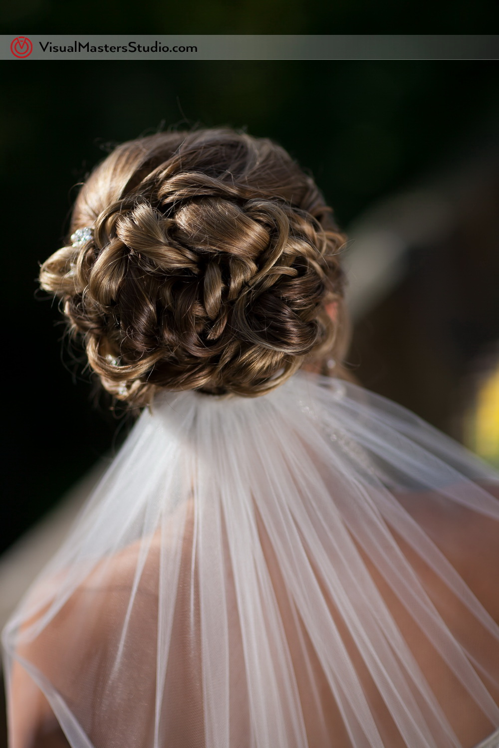 Bridal Hairstyles by Visual Masters
