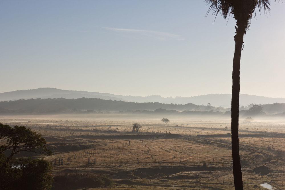 O campo ao amanhecer. Ao fundo, as matas onde ficam nossas trilhas.