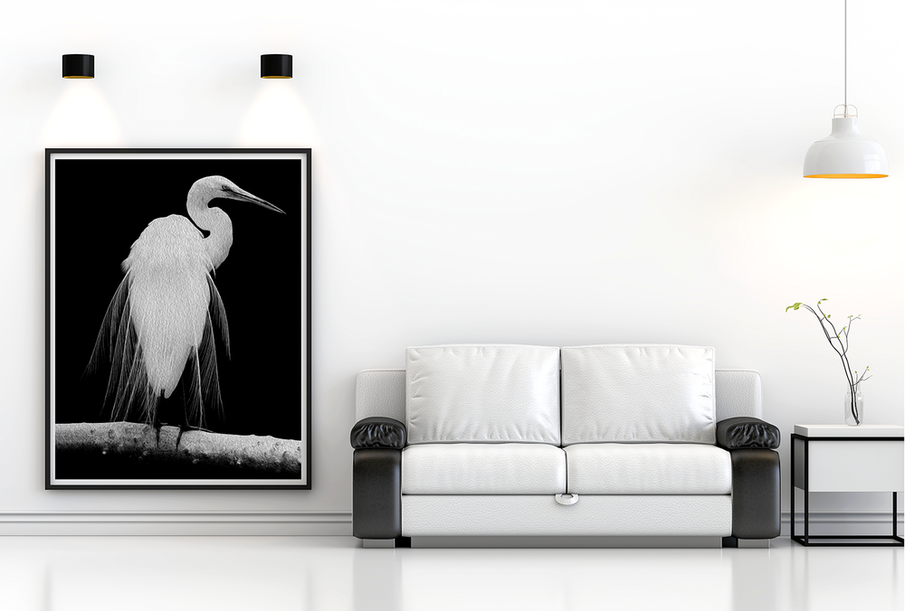 """Great Egret in Full Bloom I"""