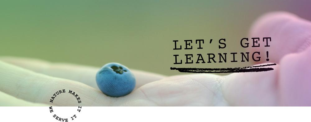 JL-Learn.jpg