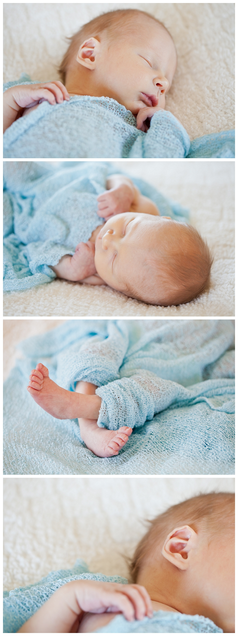 Steph Layne Photography _Newborn