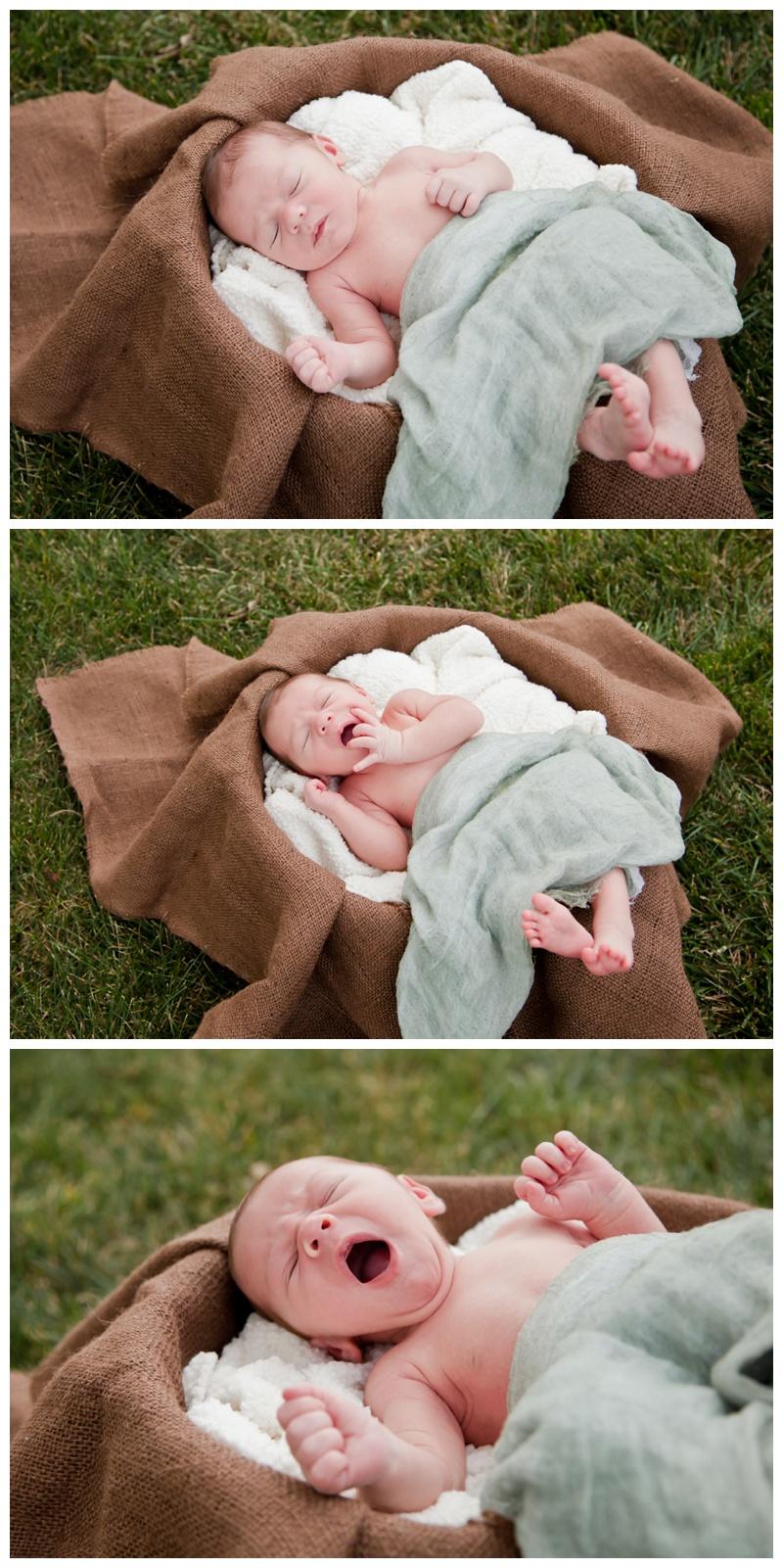 Colton (Newborn)