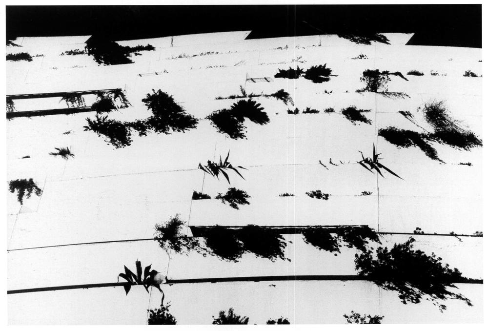 """""""Curvilinea"""": Marina Baie des Anges, di André Minangoy. Costa Azzurra, 1999."""