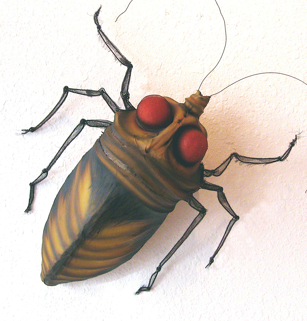 cockroach copy.jpg