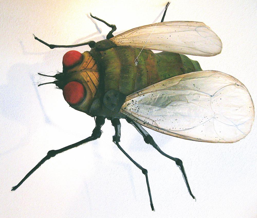 green fly copy.jpg
