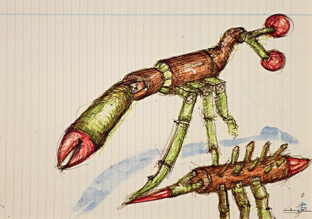 stick bug.JPG