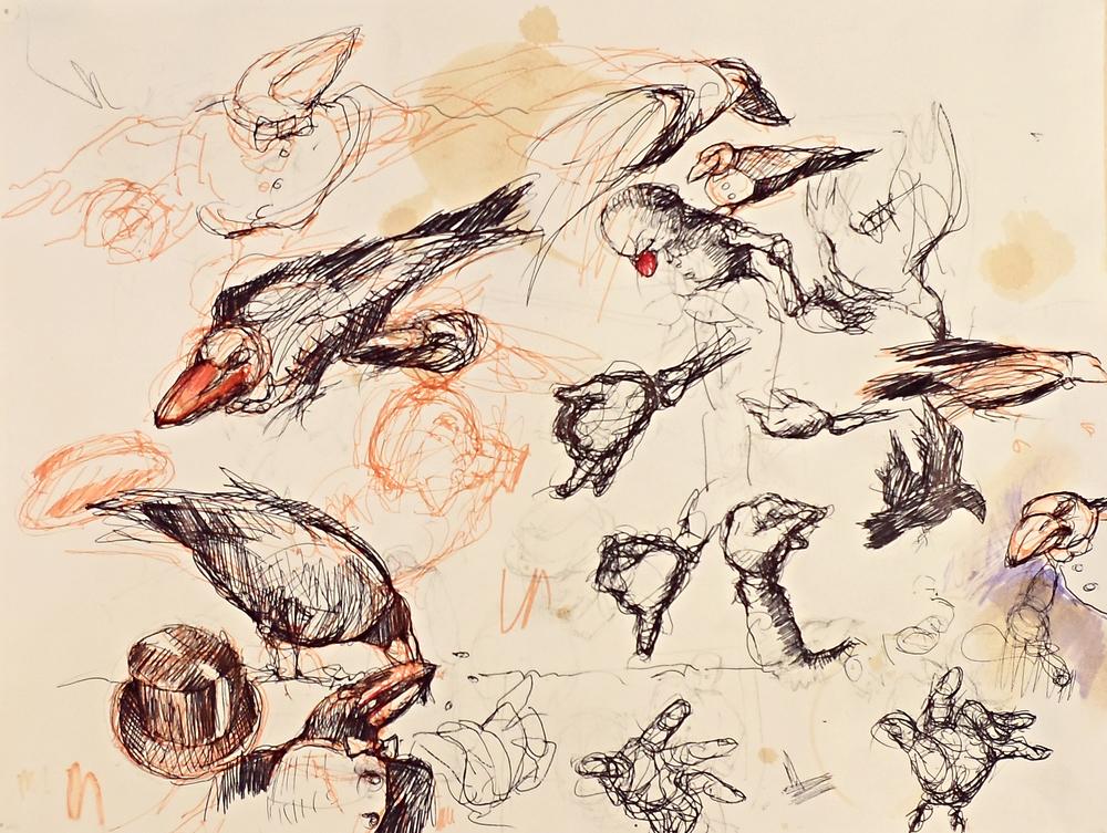 crows1.jpg