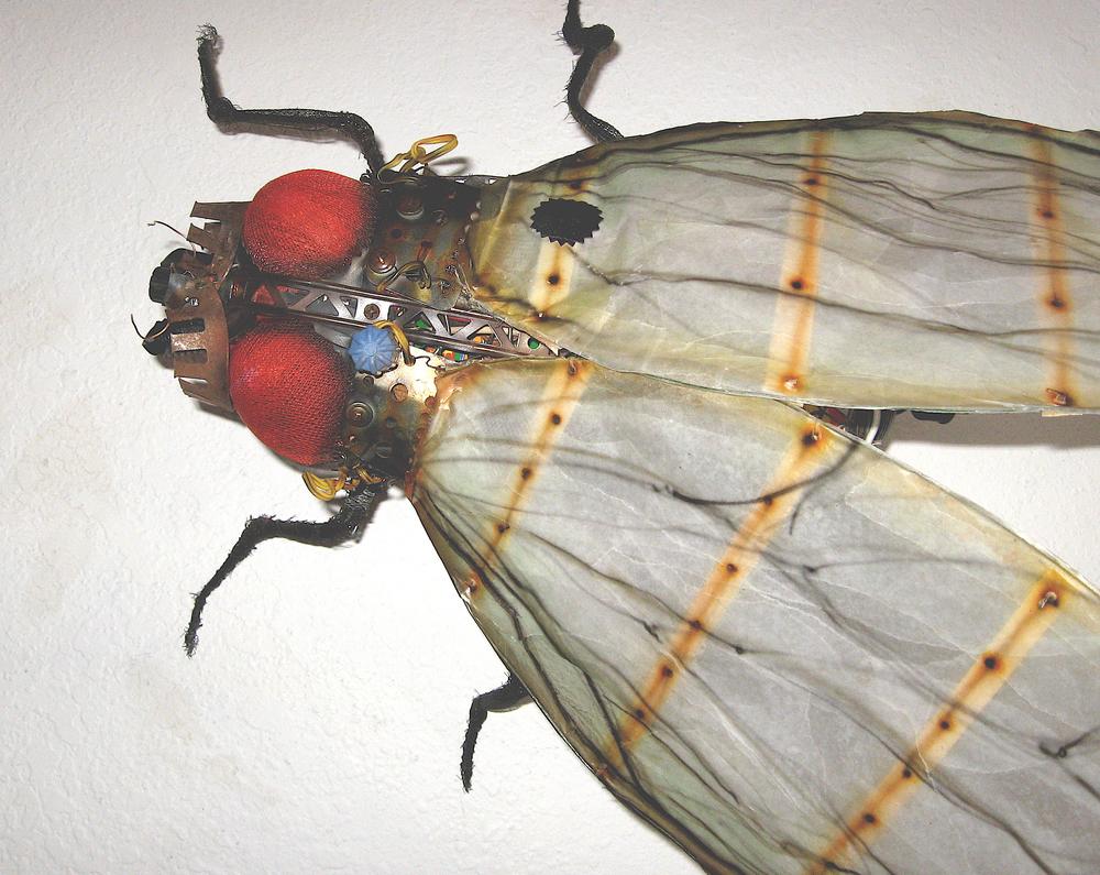 big wing fly.jpg