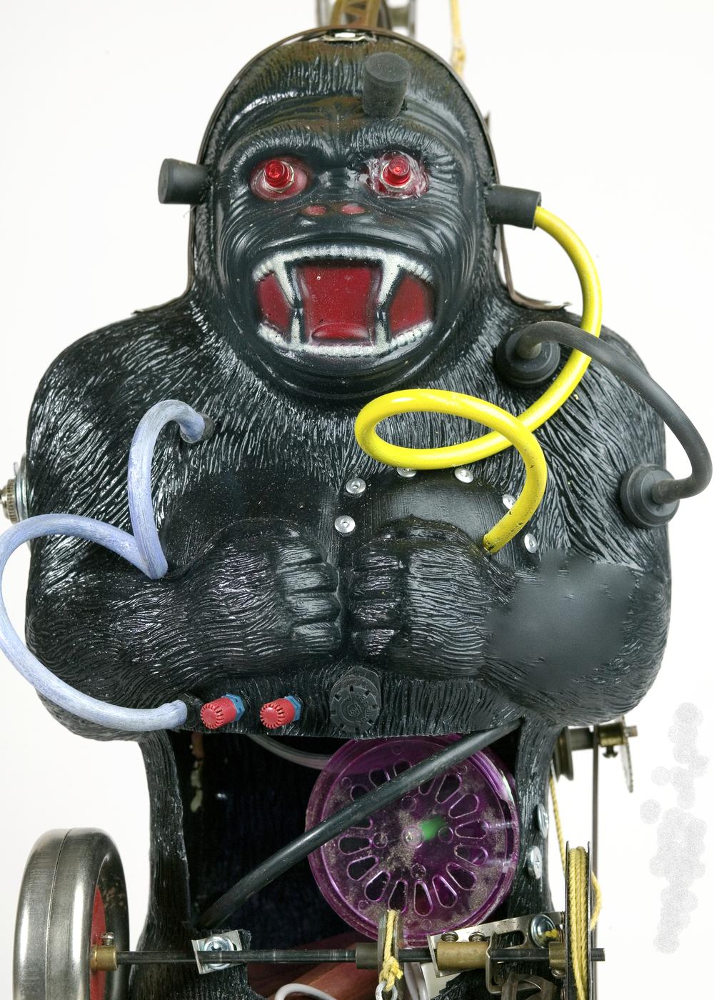 closeup gorilla 8.jpg