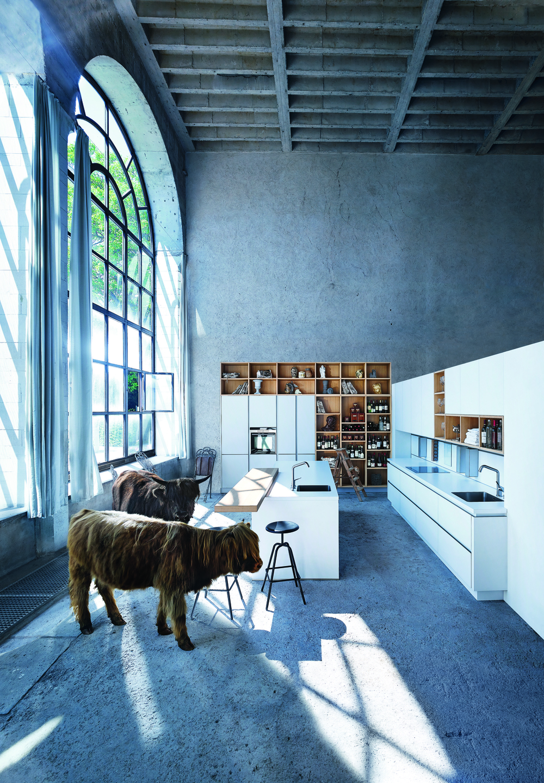 Kitchens Animals Transform Communications