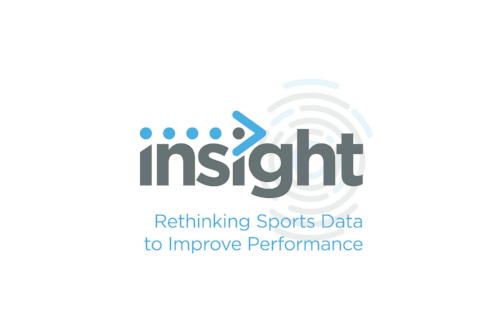 Copy of insight-analysis-logo