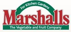 Copy of marshalls-seeds-logo