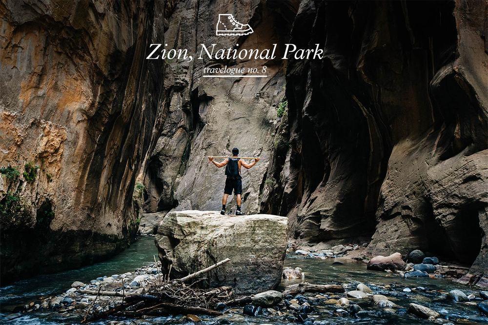 zion-national-park-moses-mehraban.jpg