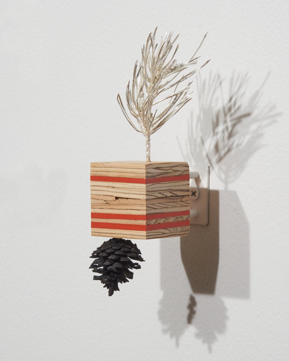 Pine-Plywood2.jpg
