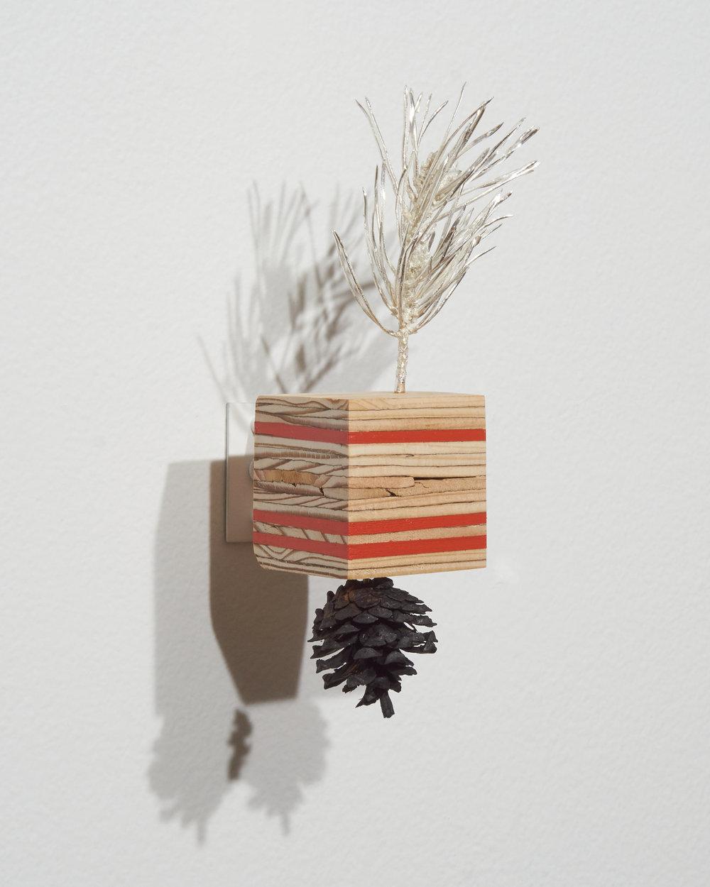 Pine-Plywood3.jpg
