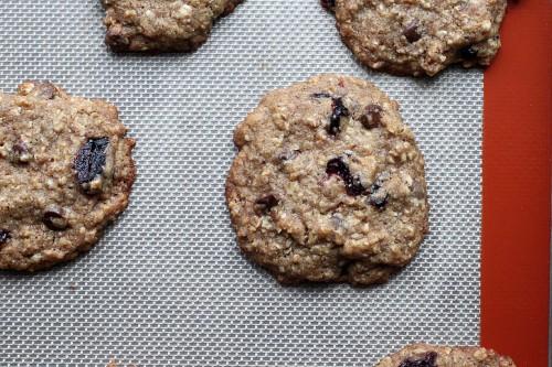 cookie3-500x333.jpg