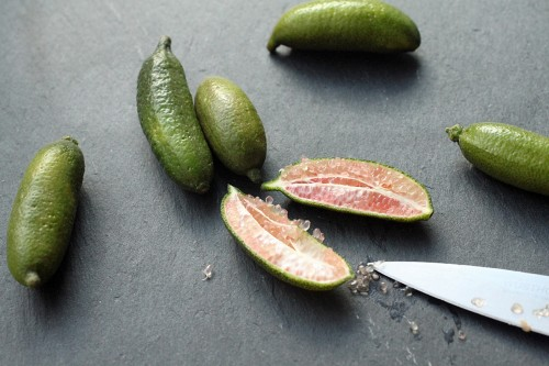 finger-lime-pic1-500x333.jpg