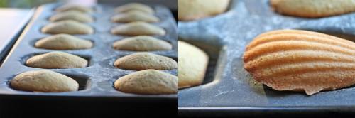 madeleine-pic3-500x166.jpg