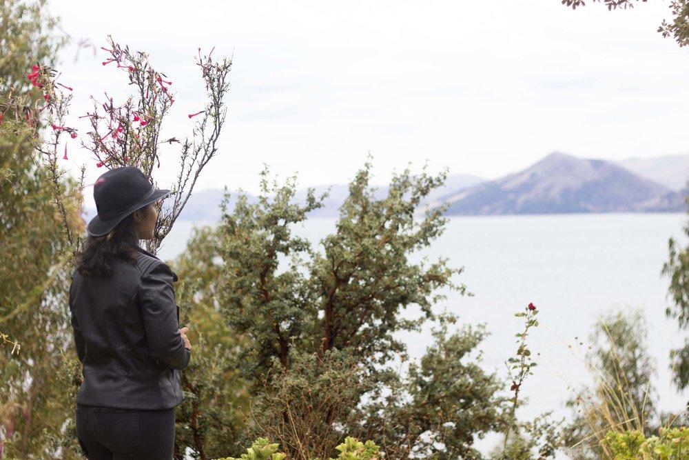 Puno- Isla Suasi25.jpg