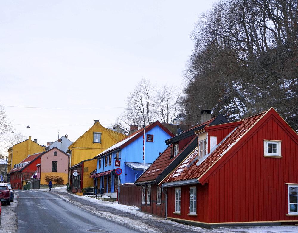 Krity S x Norway 2018_5.jpg