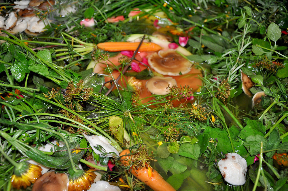 making vervino with dill, flowers, and carrots