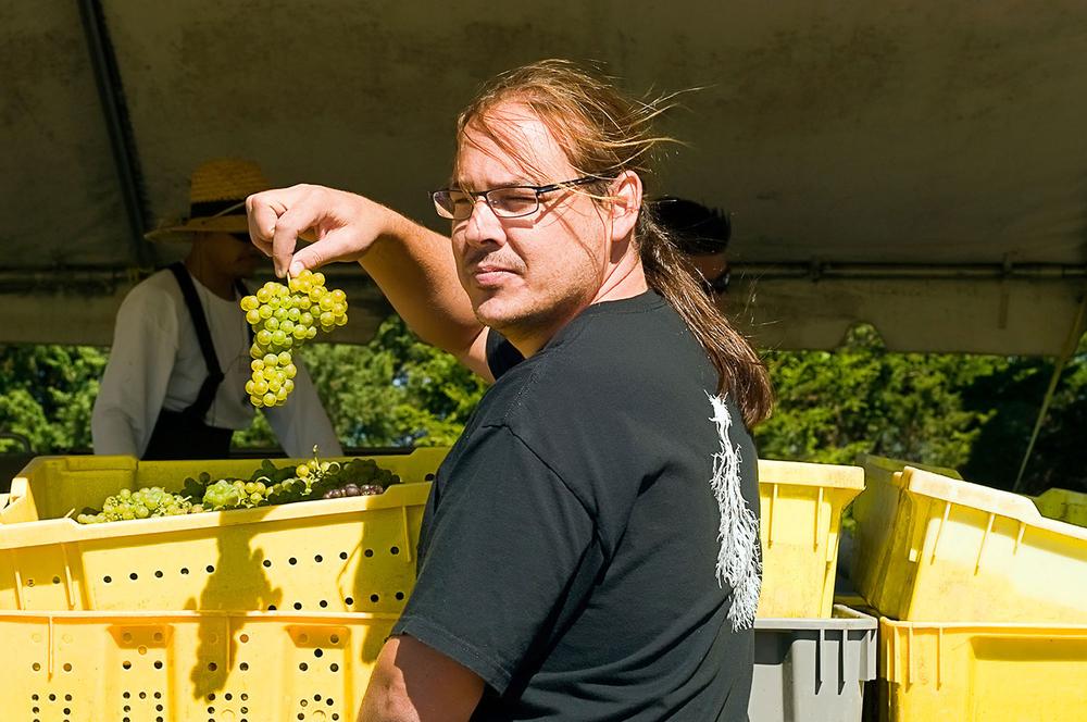 winemaker holding grape cluster