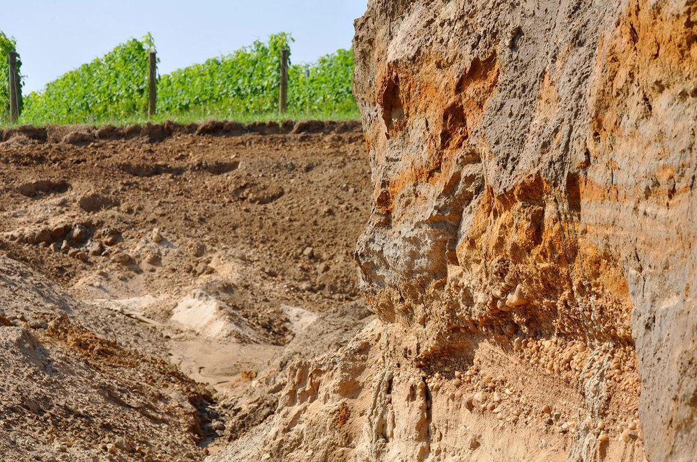 soil profile in a pit