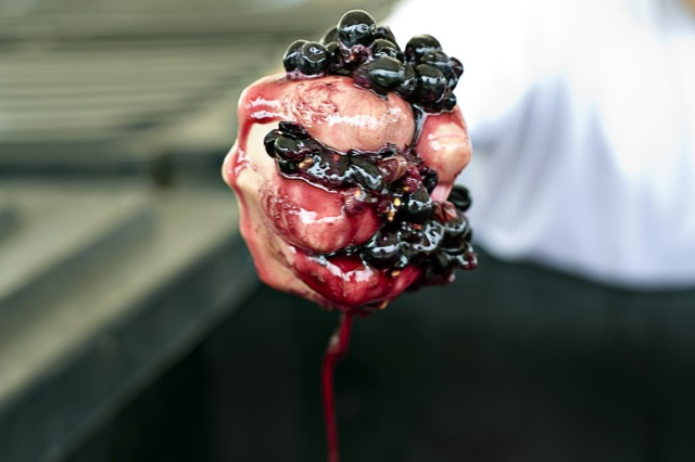 red grapes squeezed in hand