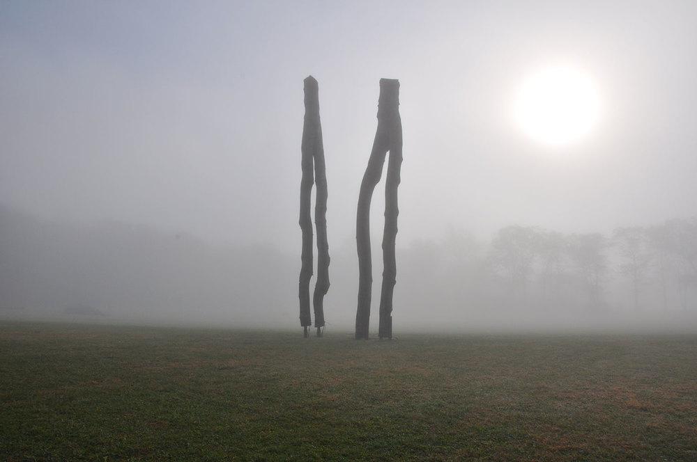 wood sculpture in fog