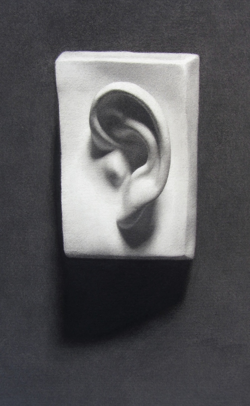 Ear Cast Drawing Lrg.jpg