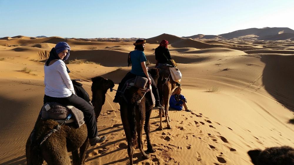 desert trek go!