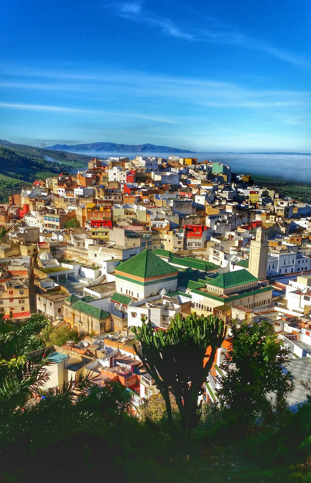 Moulay Idriss from up top.